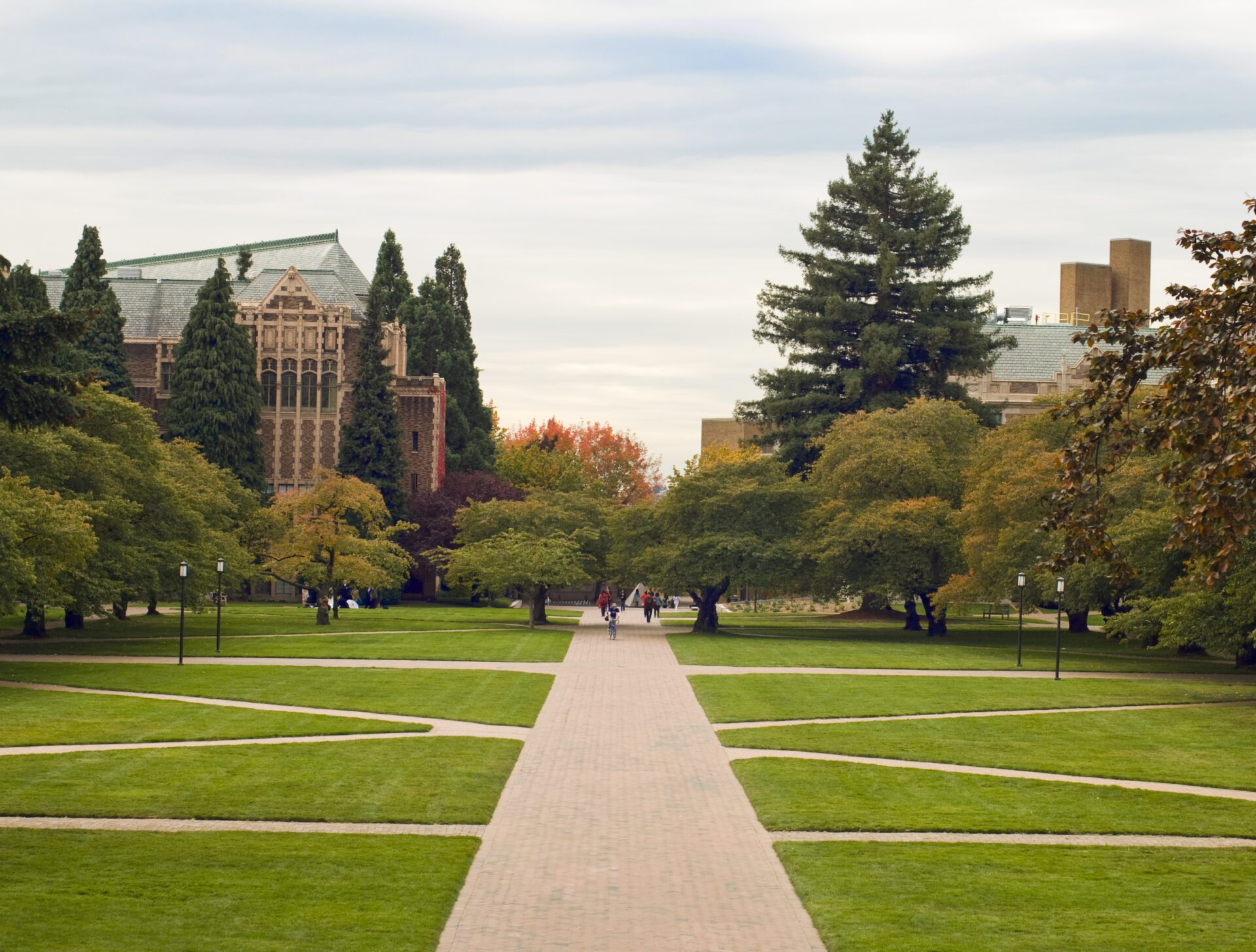 college campus paths representing knowledge management in higher education